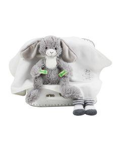 Picnic Bunny op speelgoedkoffer met sokjes