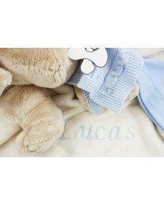 Babytray met knuffelbeer en speendoekje - roze of lichtblauwe versie